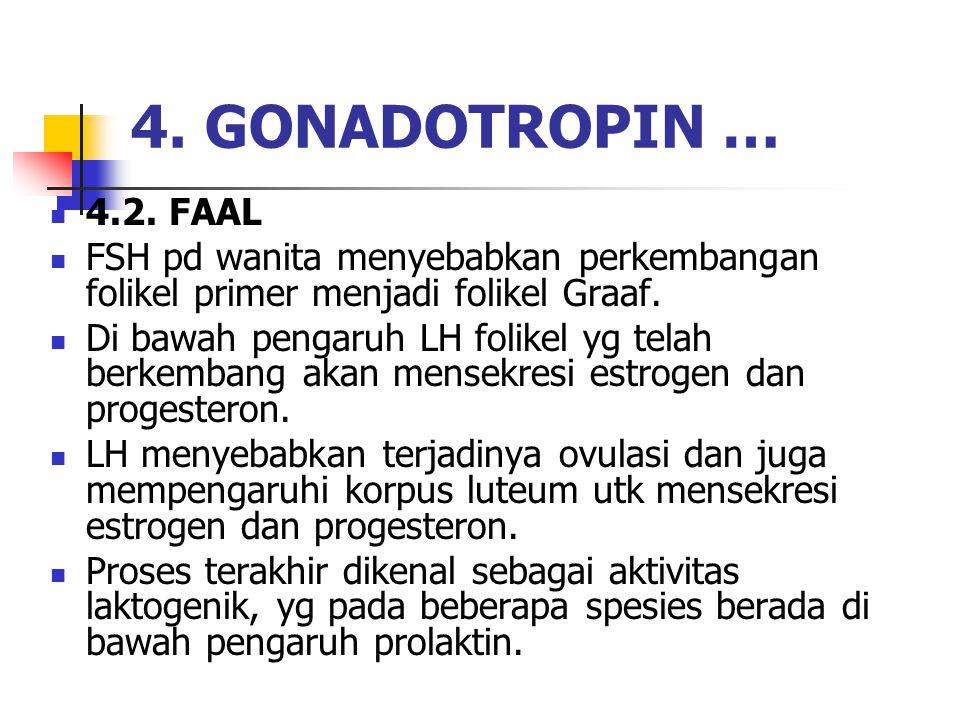 4. GONADOTROPIN … 4.2. FAAL. FSH pd wanita menyebabkan perkembangan folikel primer menjadi folikel Graaf.