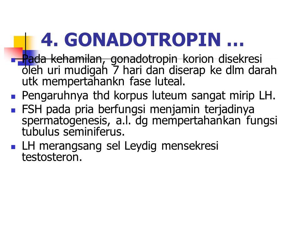 4. GONADOTROPIN … Pada kehamilan, gonadotropin korion disekresi oleh uri mudigah 7 hari dan diserap ke dlm darah utk mempertahankn fase luteal.