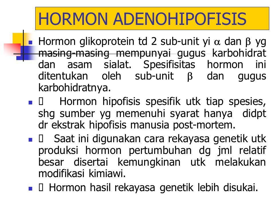 HORMON ADENOHIPOFISIS