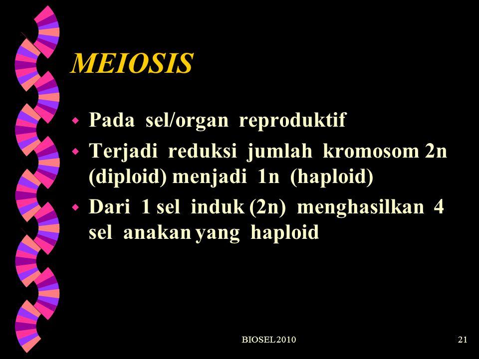 MEIOSIS Pada sel/organ reproduktif