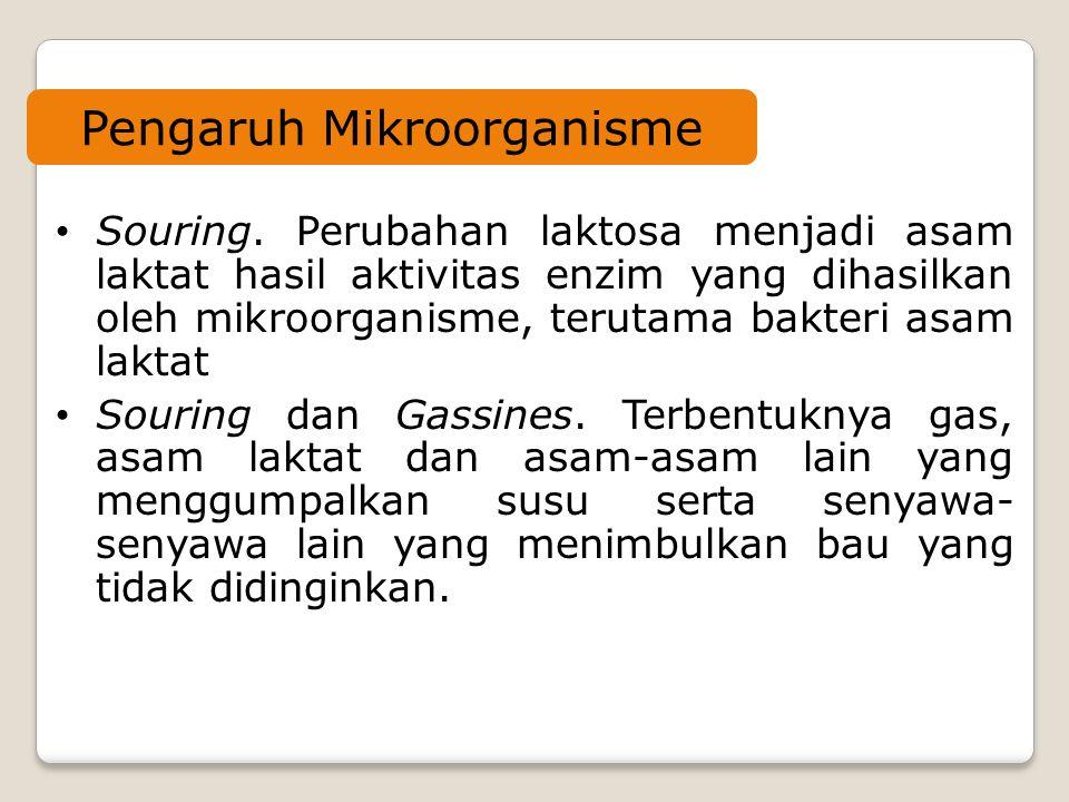 Pengaruh Mikroorganisme