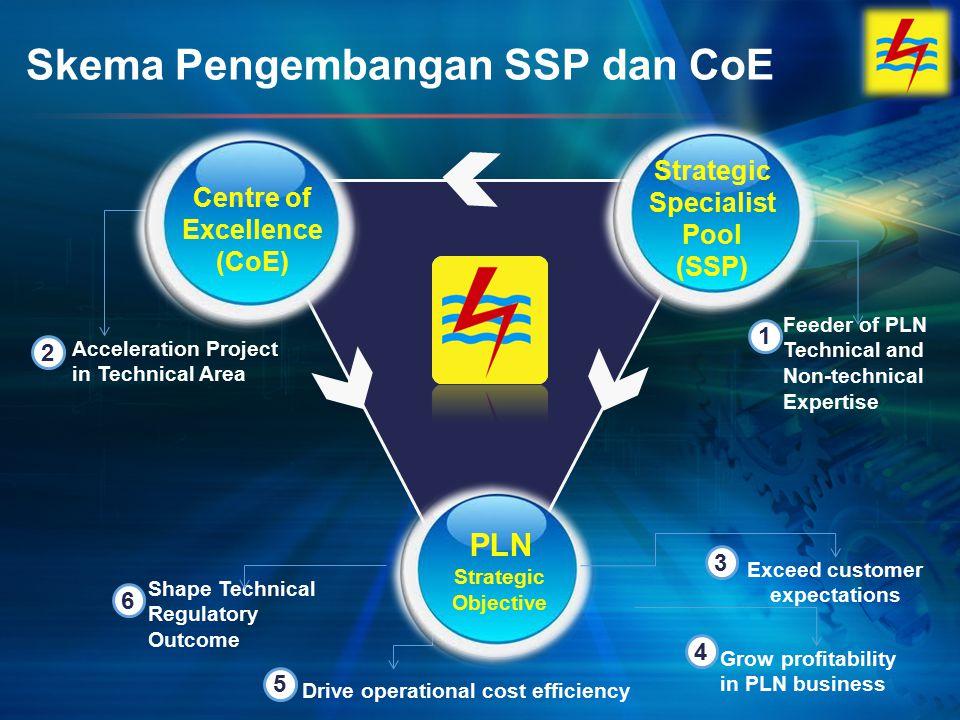Skema Pengembangan SSP dan CoE