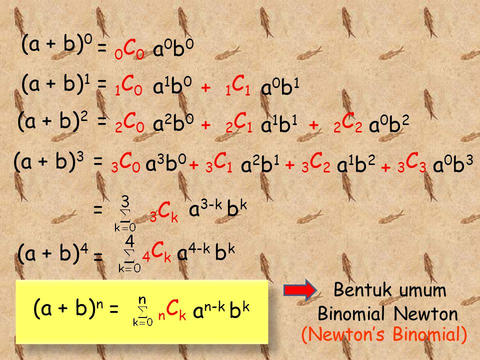 (a + b)0 = 0C0 a0b0 (a + b)1 = 1C0 a1b0 1C1 + a0b1 (a + b)2 = 2C0 a2b0