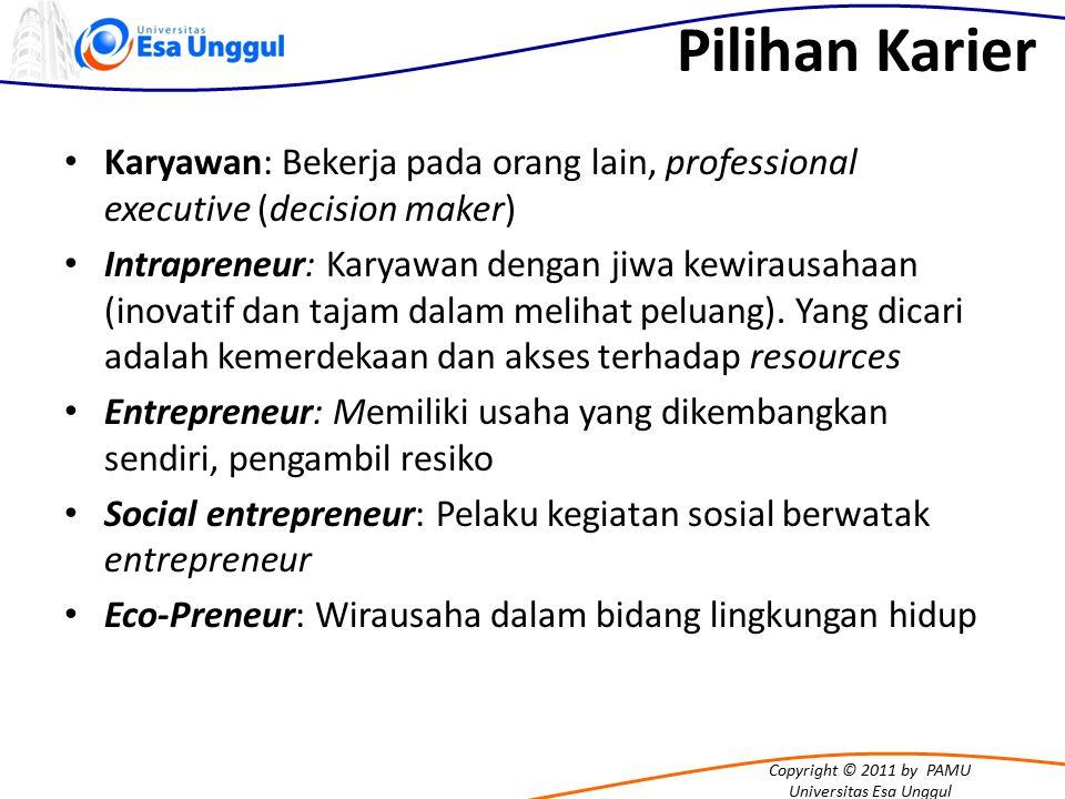 Pilihan Karier Karyawan: Bekerja pada orang lain, professional executive (decision maker)