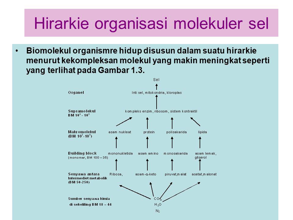 Hirarkie organisasi molekuler sel