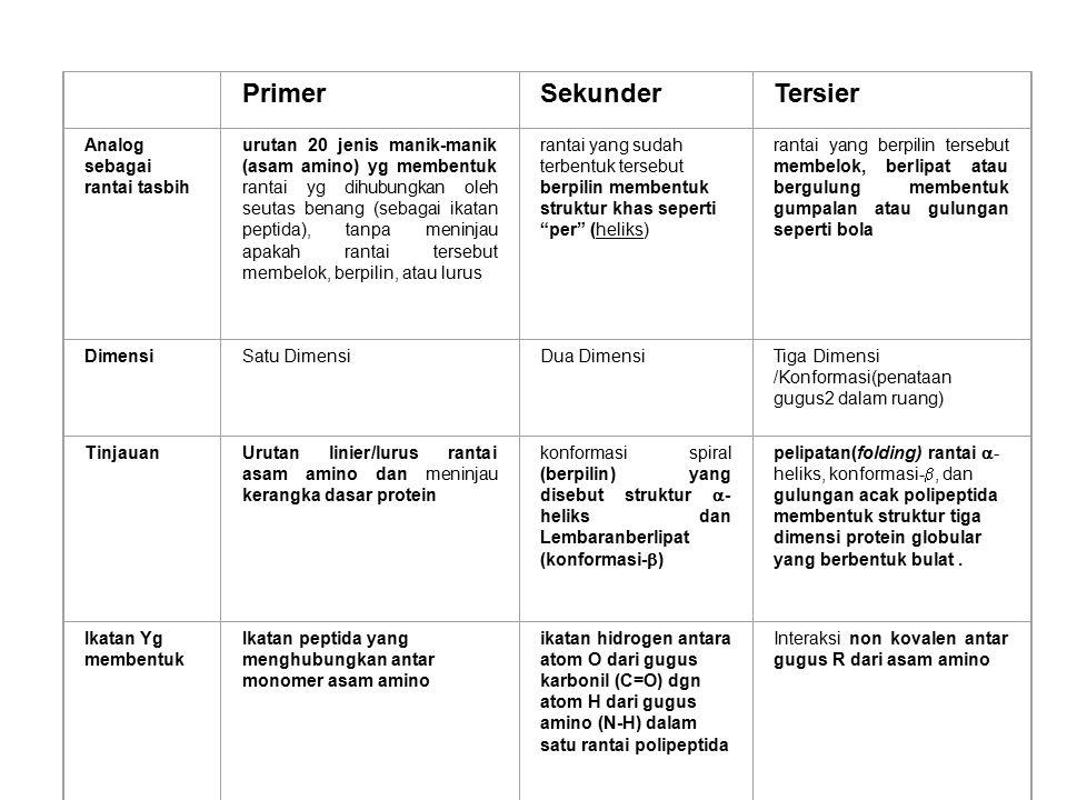 Primer Sekunder Tersier Analog sebagai rantai tasbih