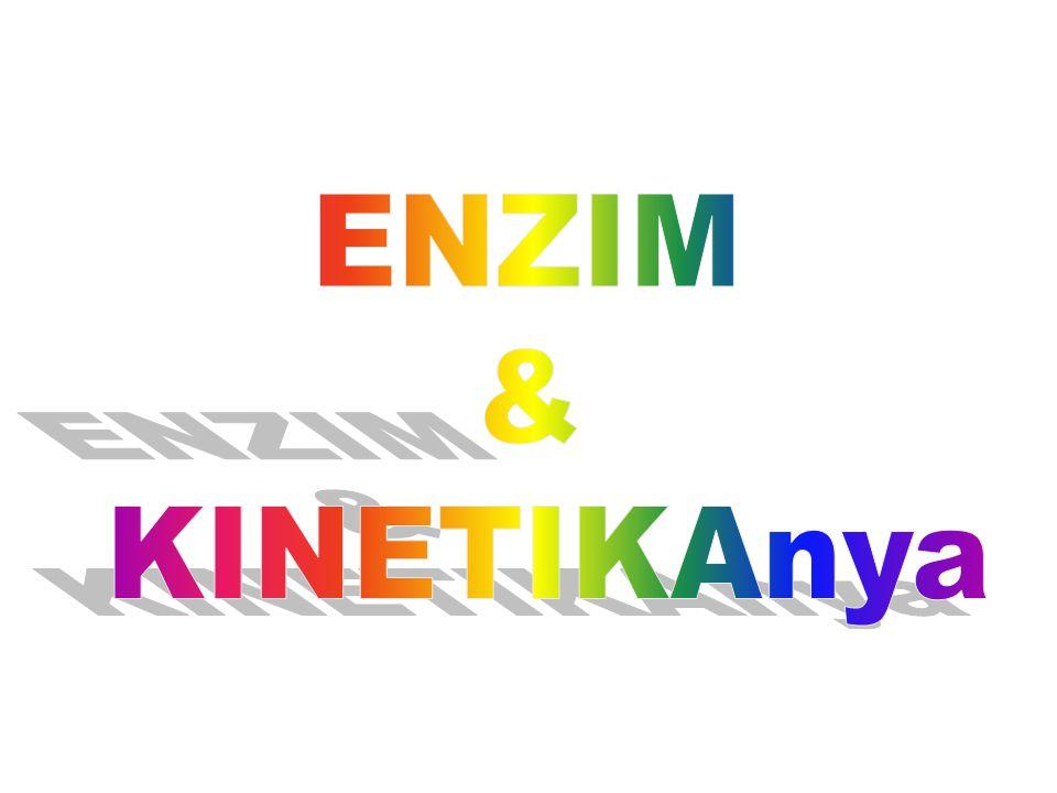 ENZIM & KINETIKAnya
