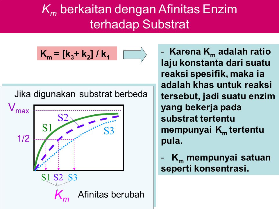 Km berkaitan dengan Afinitas Enzim