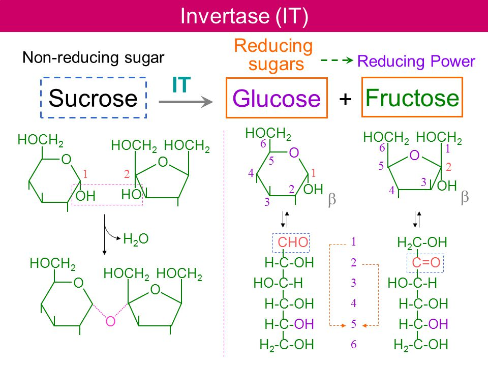 Sucrose Glucose Fructose + Invertase (IT) IT Reducing sugars