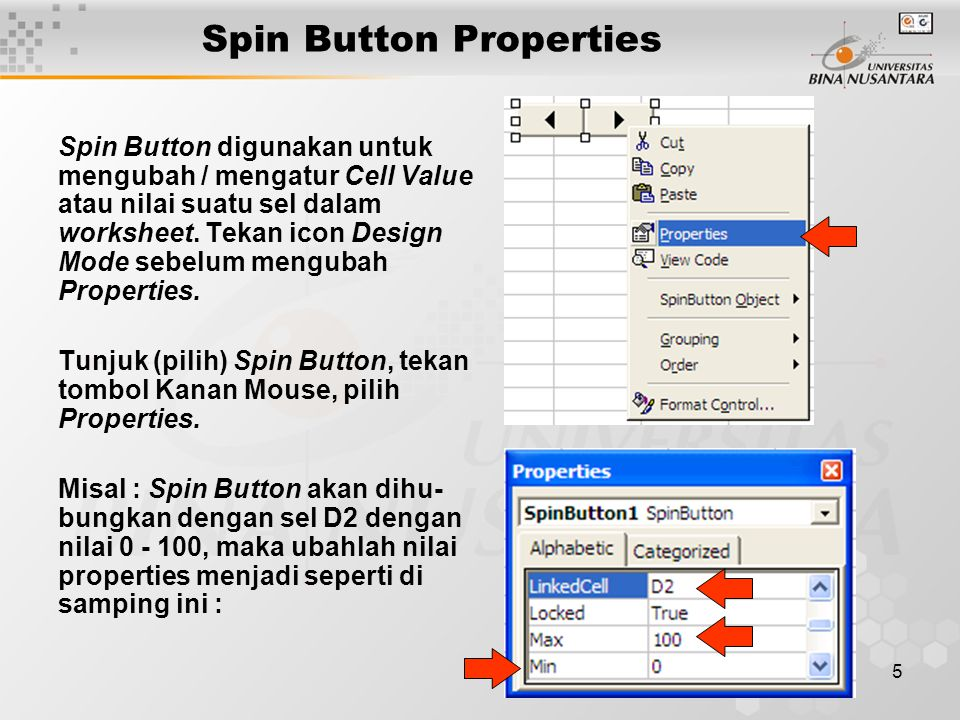 Spin Button Properties