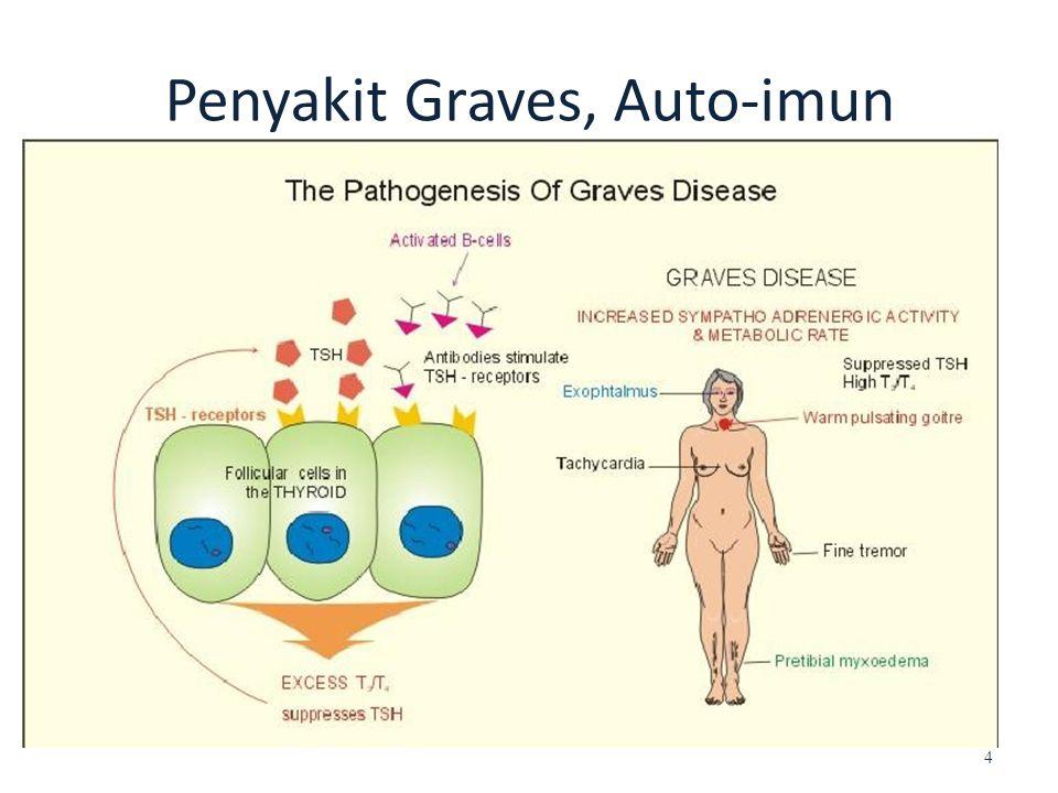 Penyakit Graves, Auto-imun