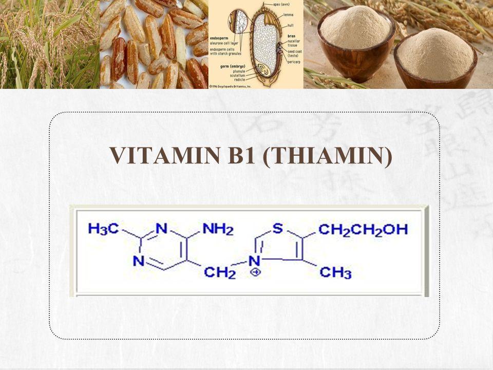 VITAMIN B1 (THIAMIN)