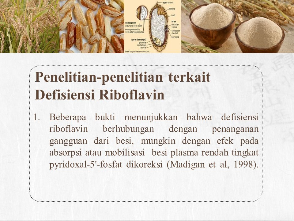 Penelitian-penelitian terkait Defisiensi Riboflavin