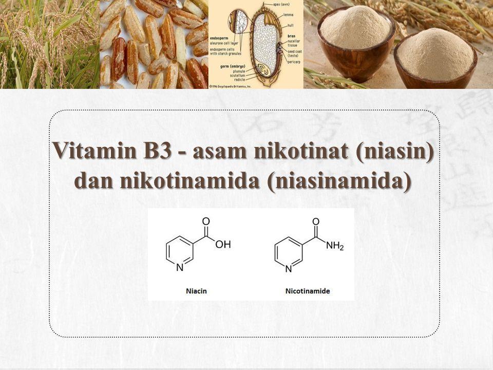 Vitamin B3 - asam nikotinat (niasin) dan nikotinamida (niasinamida)