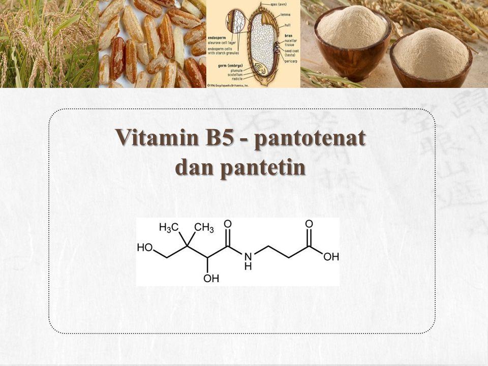 Vitamin B5 - pantotenat dan pantetin