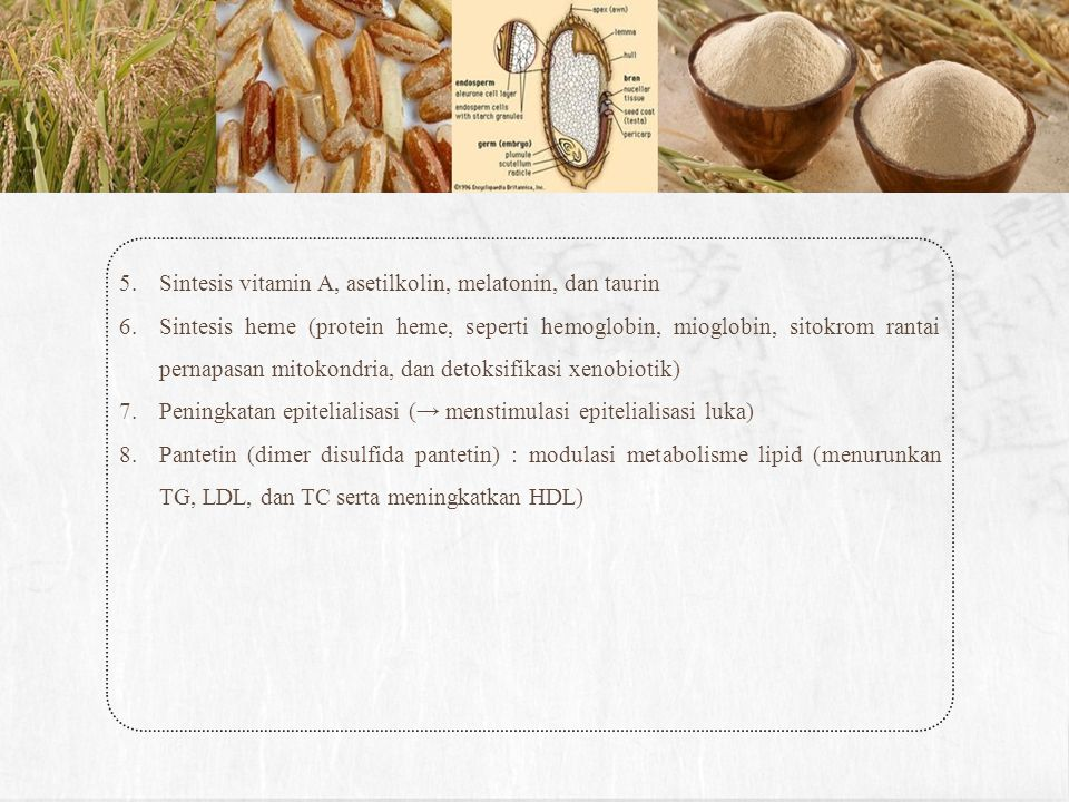 Sintesis vitamin A, asetilkolin, melatonin, dan taurin