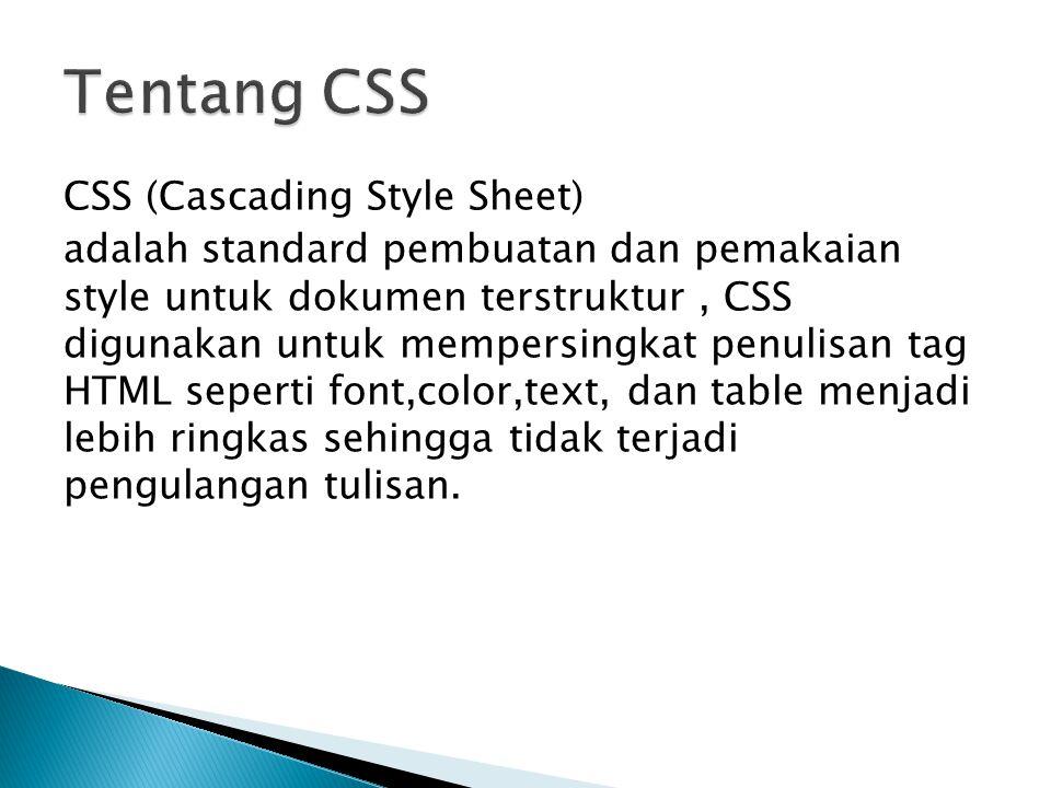 Tentang CSS