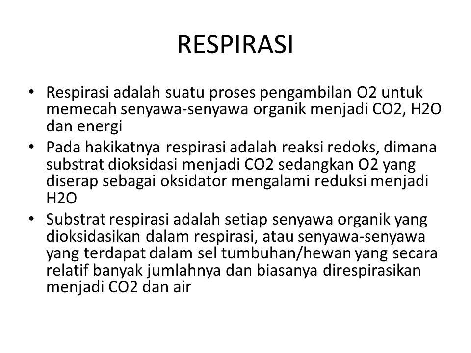 RESPIRASI Respirasi adalah suatu proses pengambilan O2 untuk memecah senyawa-senyawa organik menjadi CO2, H2O dan energi.