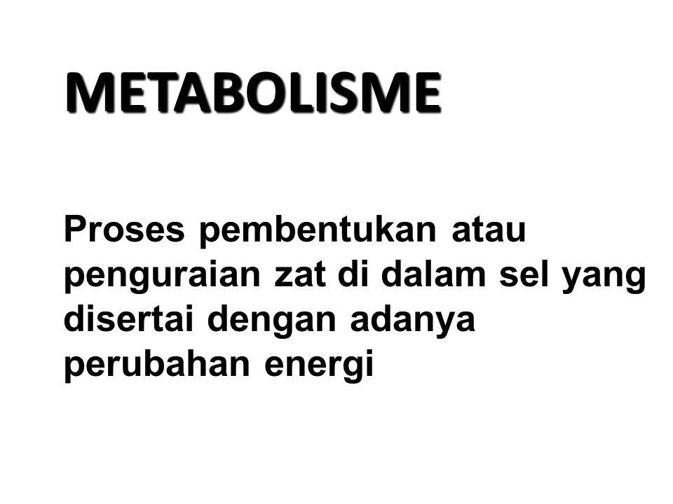 METABOLISME Proses pembentukan atau penguraian zat di dalam sel yang disertai dengan adanya perubahan energi.