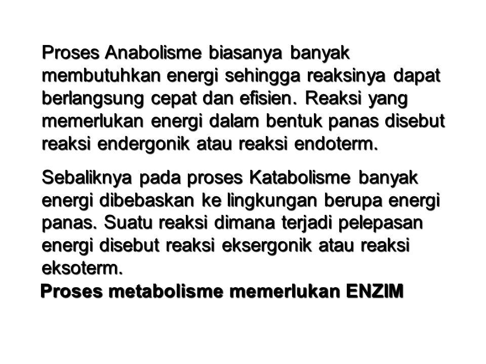 Proses Anabolisme biasanya banyak membutuhkan energi sehingga reaksinya dapat berlangsung cepat dan efisien. Reaksi yang memerlukan energi dalam bentuk panas disebut reaksi endergonik atau reaksi endoterm.
