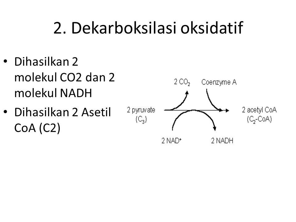 2. Dekarboksilasi oksidatif