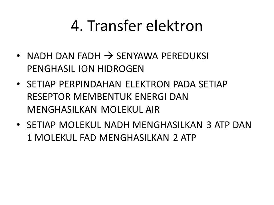 4. Transfer elektron NADH DAN FADH  SENYAWA PEREDUKSI PENGHASIL ION HIDROGEN.