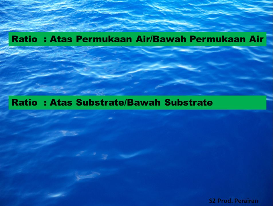 Ratio : Atas Permukaan Air/Bawah Permukaan Air