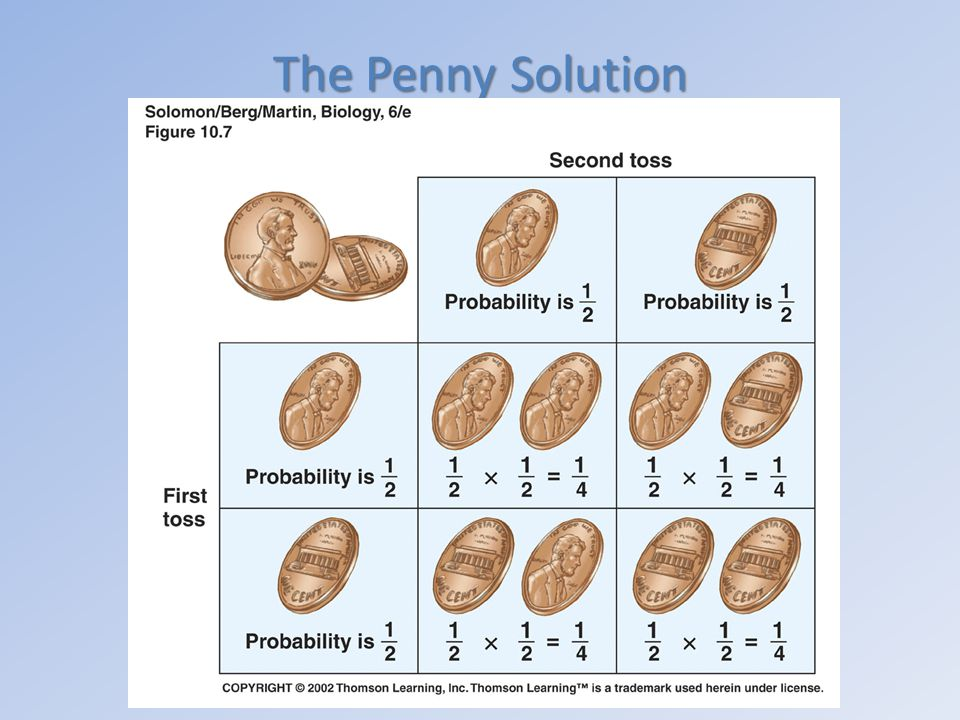 The Penny Solution