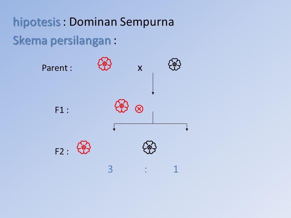 Parent :  x  hipotesis : Dominan Sempurna Skema persilangan : 3 : 1
