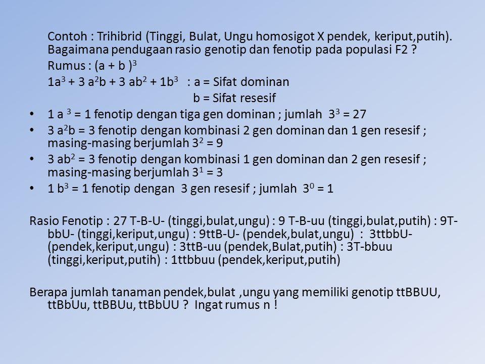 Contoh : Trihibrid (Tinggi, Bulat, Ungu homosigot X pendek, keriput,putih). Bagaimana pendugaan rasio genotip dan fenotip pada populasi F2