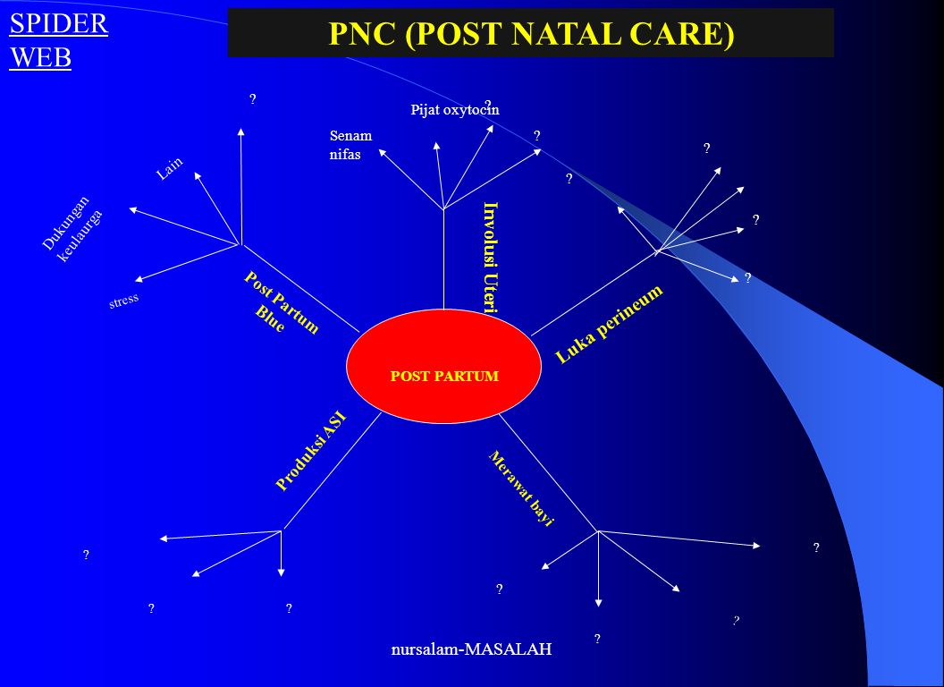 PNC (POST NATAL CARE) SPIDER WEB Involusi Uteri Luka perineum