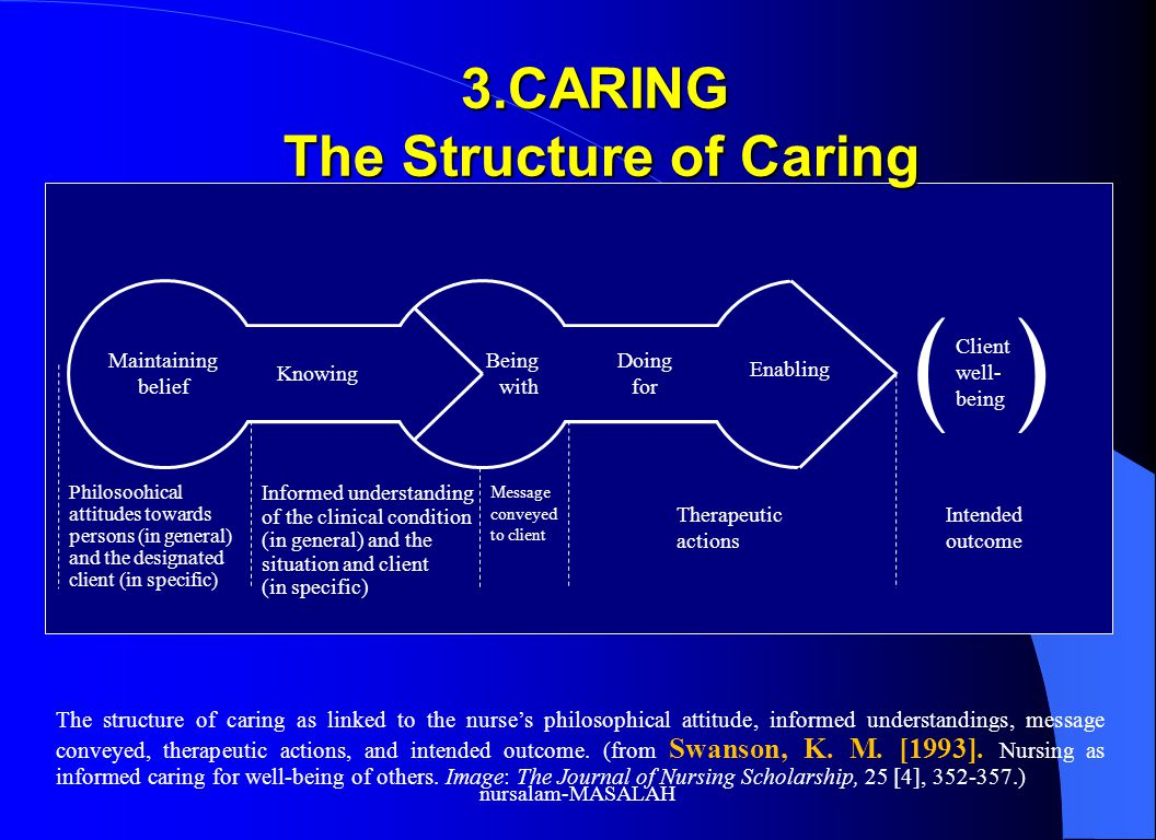 3.CARING The Structure of Caring
