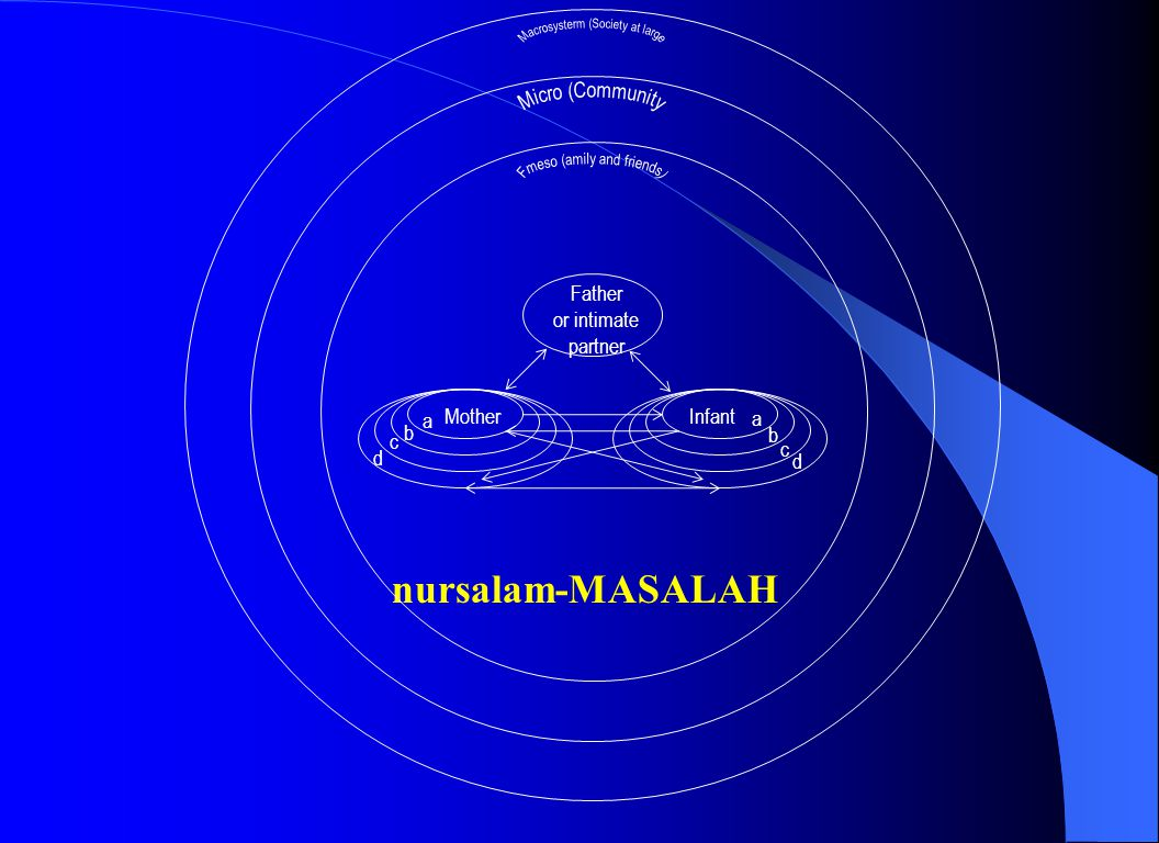 nursalam-MASALAH Macrosysterm (Society at large Micro (Community