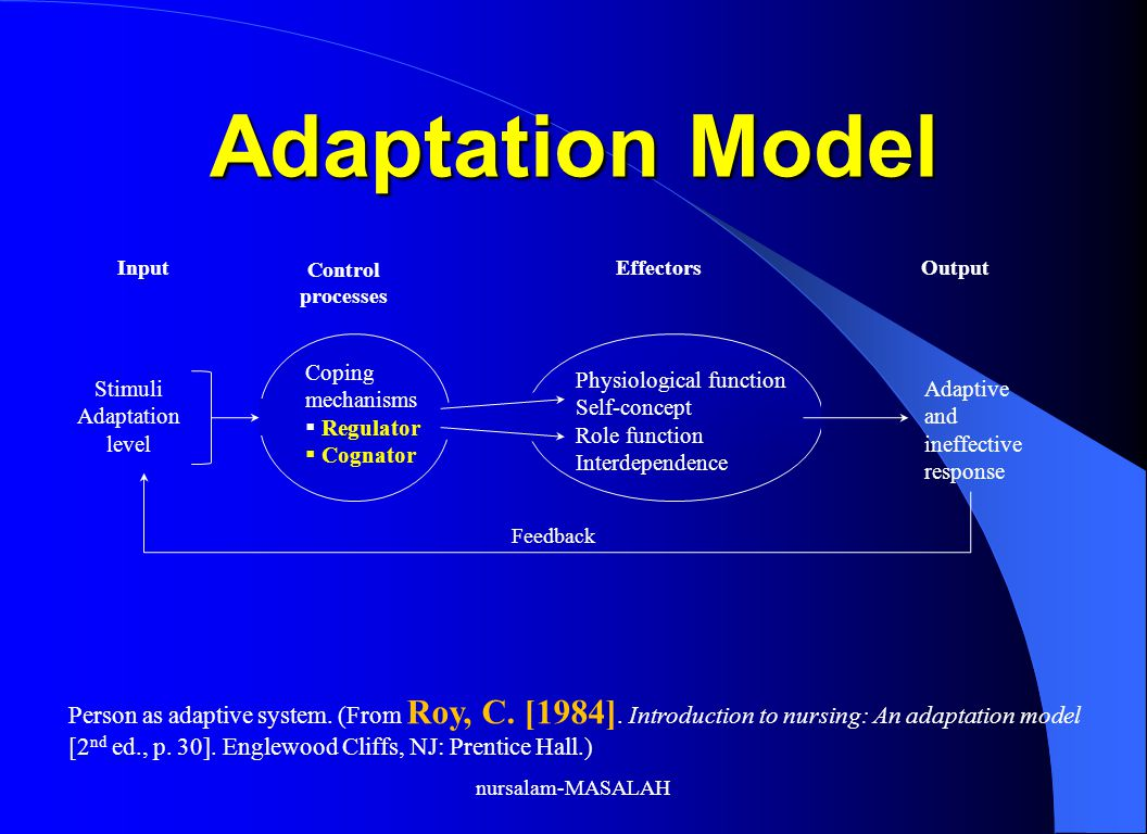 Adaptation Model Input. Control processes. Effectors. Output. Coping mechanisms. Regulator. Cognator.