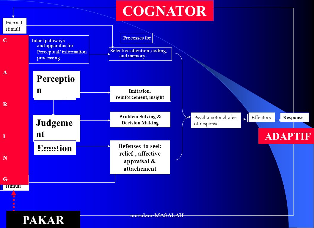 COGNATOR PAKAR ADAPTIF Perception Judgement Emotion Learning