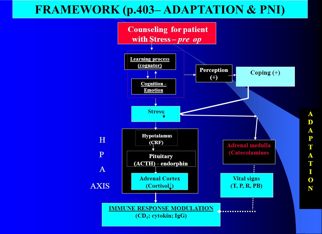 FRAMEWORK (p.403– ADAPTATION & PNI)