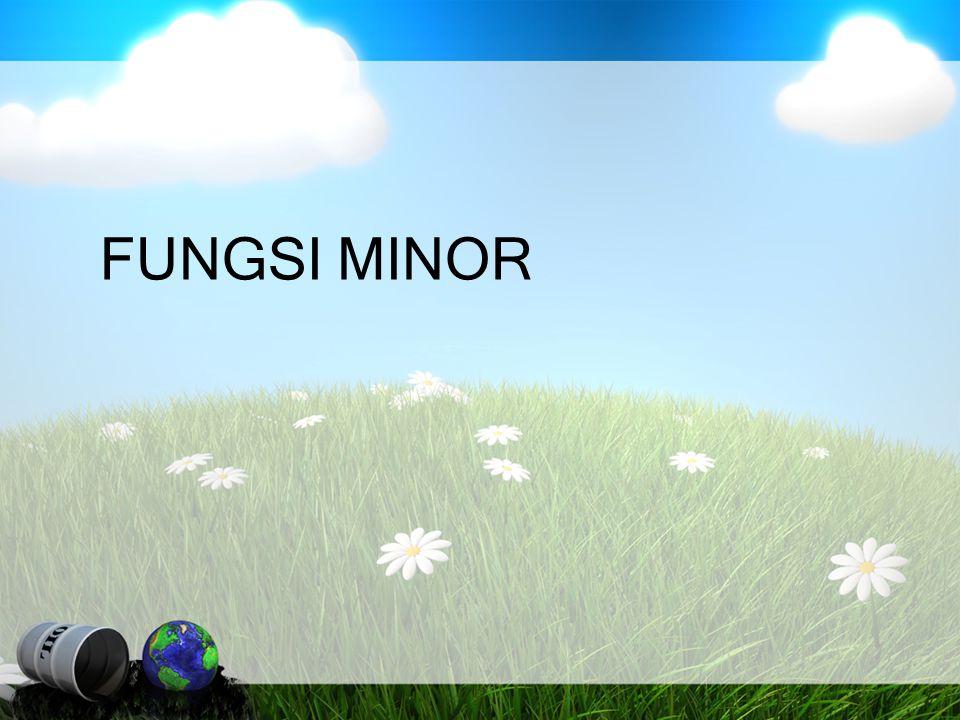 FUNGSI MINOR