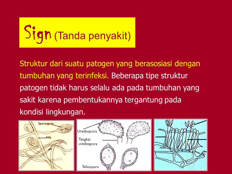 Sign (Tanda penyakit)