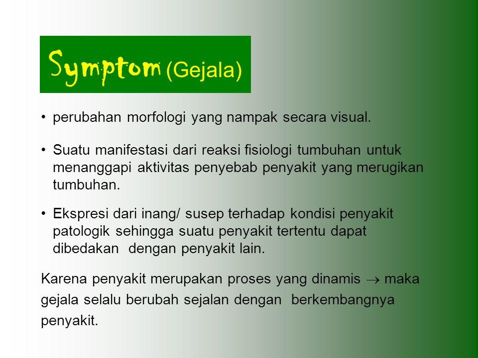 Symptom (Gejala) perubahan morfologi yang nampak secara visual.