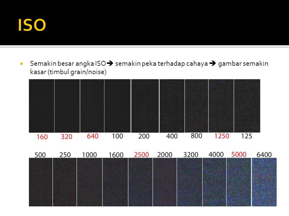 ISO Semakin besar angka ISO semakin peka terhadap cahaya  gambar semakin kasar (timbul grain/noise)