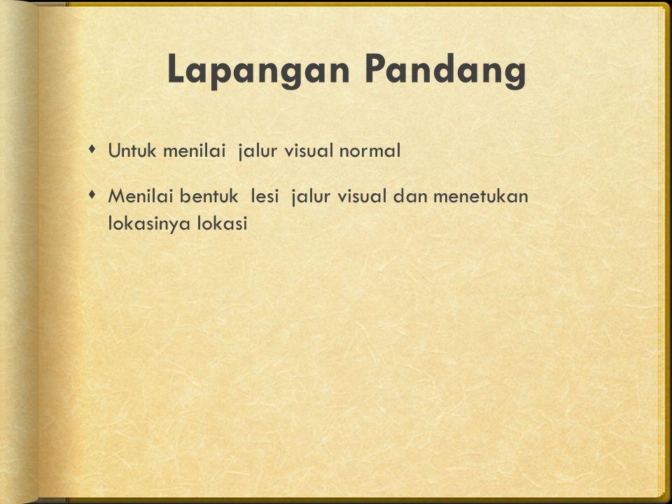 Lapangan Pandang Untuk menilai jalur visual normal
