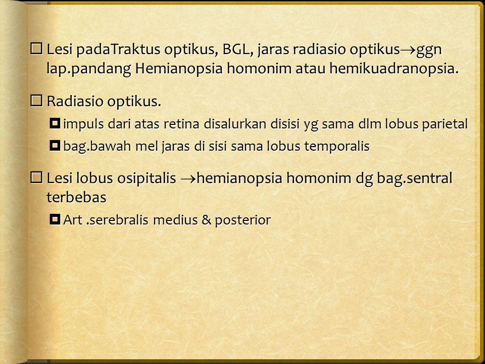 Lesi lobus osipitalis hemianopsia homonim dg bag.sentral terbebas