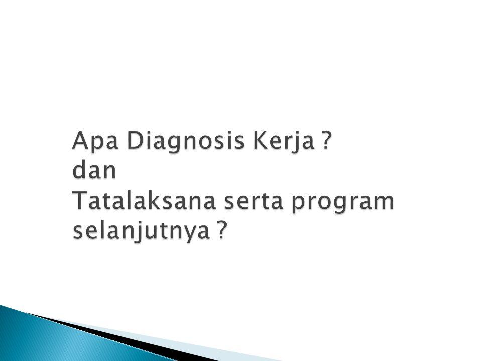 Apa Diagnosis Kerja dan Tatalaksana serta program selanjutnya