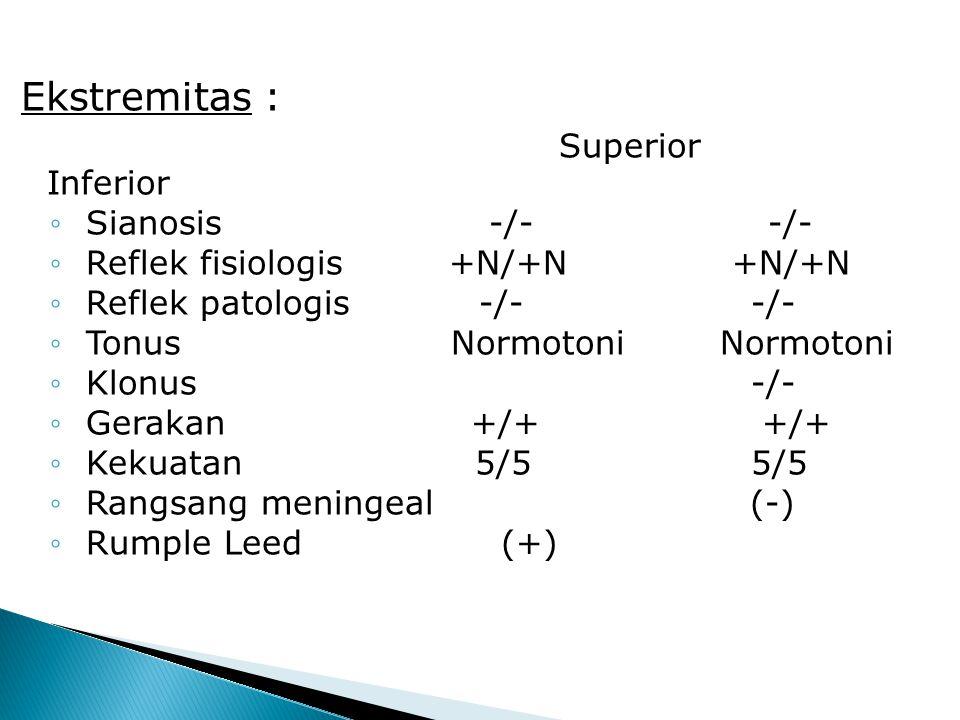 Ekstremitas : Superior Inferior Sianosis -/- -/-