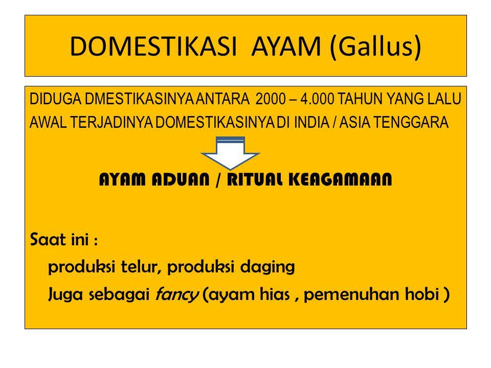 DOMESTIKASI AYAM (Gallus)