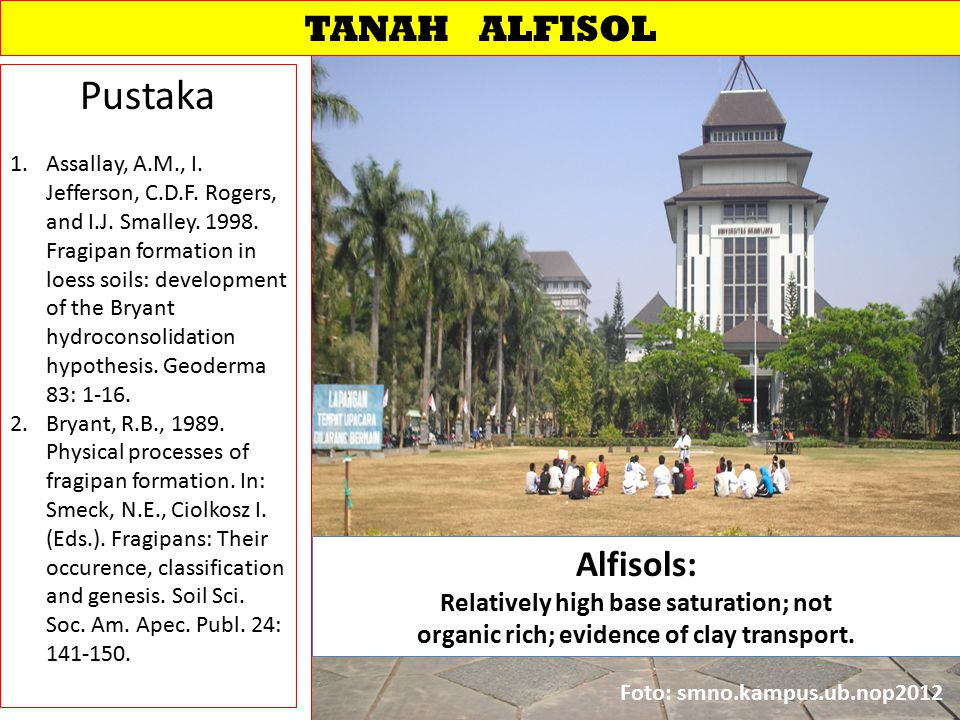 Pustaka TANAH ALFISOL Alfisols: Relatively high base saturation; not