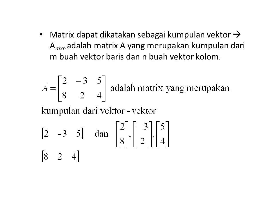 Matrix dapat dikatakan sebagai kumpulan vektor  Amxn adalah matrix A yang merupakan kumpulan dari m buah vektor baris dan n buah vektor kolom.