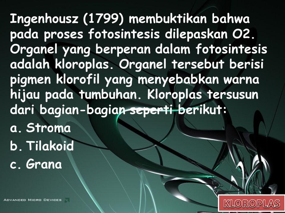 Ingenhousz (1799) membuktikan bahwa pada proses fotosintesis dilepaskan O2. Organel yang berperan dalam fotosintesis adalah kloroplas. Organel tersebut berisi pigmen klorofil yang menyebabkan warna hijau pada tumbuhan. Kloroplas tersusun dari bagian-bagian seperti berikut: