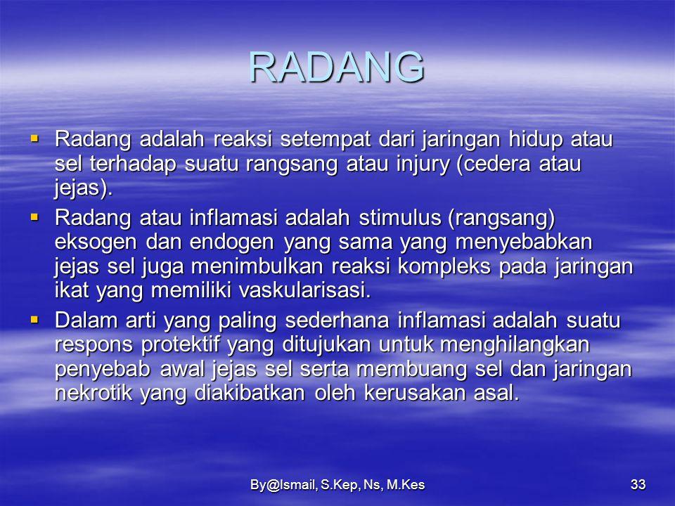 RADANG Radang adalah reaksi setempat dari jaringan hidup atau sel terhadap suatu rangsang atau injury (cedera atau jejas).