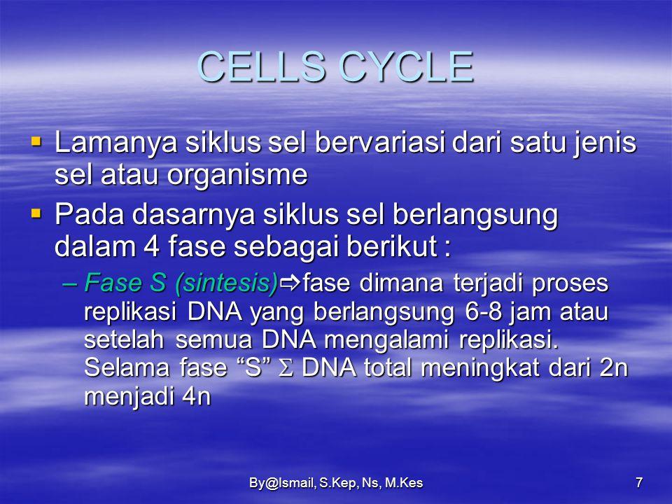 CELLS CYCLE Lamanya siklus sel bervariasi dari satu jenis sel atau organisme. Pada dasarnya siklus sel berlangsung dalam 4 fase sebagai berikut :